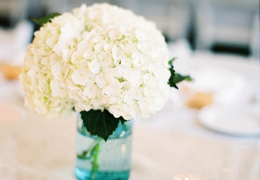 Hortensia blomster til bryllupet brude g