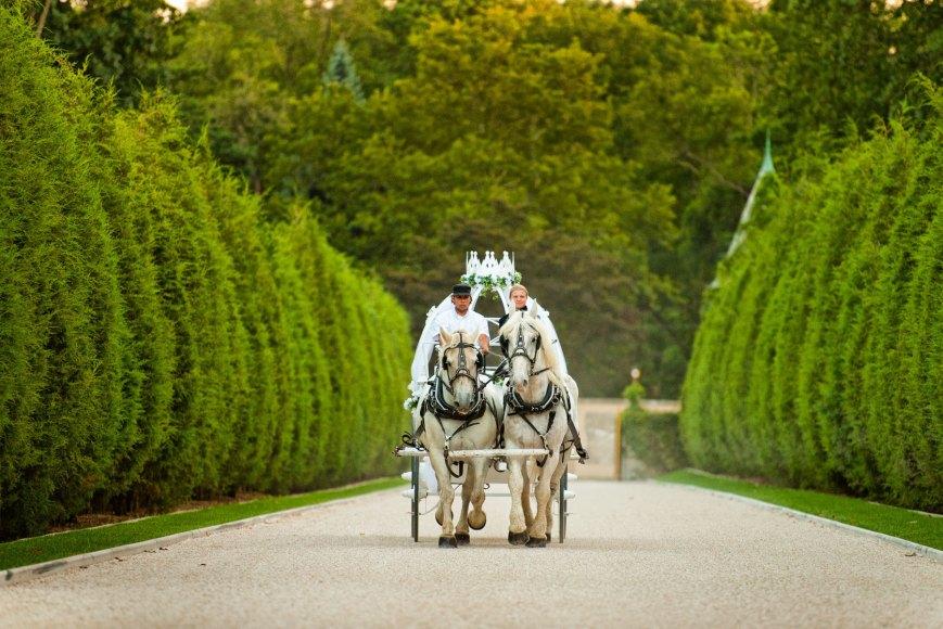 prinsessebryllup-bryllup-på-slott-slottsbryllup-herregård-i-sverige-i-danmark